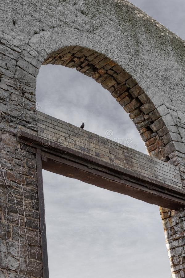 Old stone wall with open archways, ruins with black bird, death metaphor. Vertical aspect stock photos