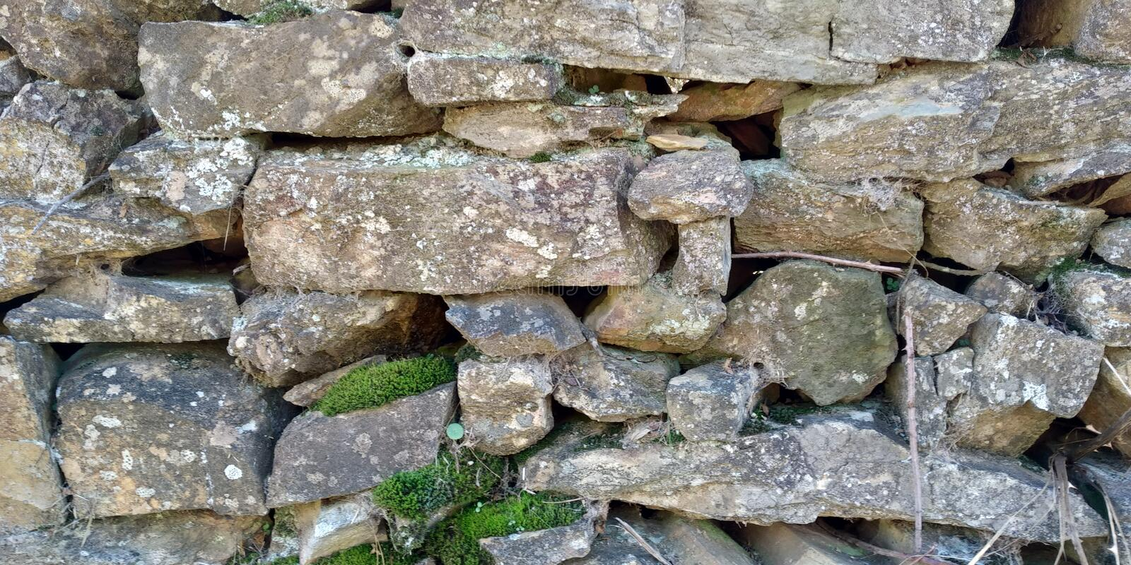 Old Stone Wall Texture. Stone Wall Texture with leaves. Grey Green. Muro de Pedra stock image