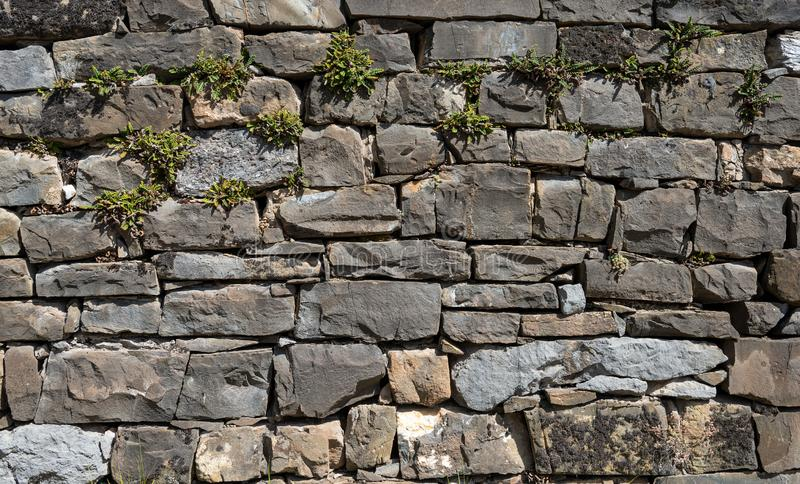 Old stone wall, wallpaper and background royalty free stock images