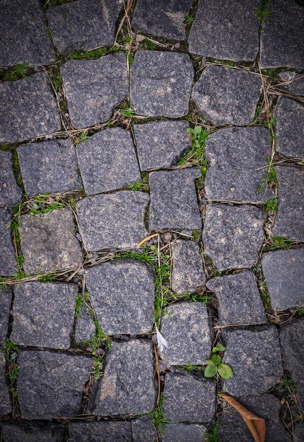 Old stoneblock pavement cobbled with square granite blocks with grass sprouted texture with vignette. background, nature. royalty free stock image