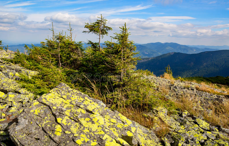 Old stones and green trees on mountain top royalty free stock photo