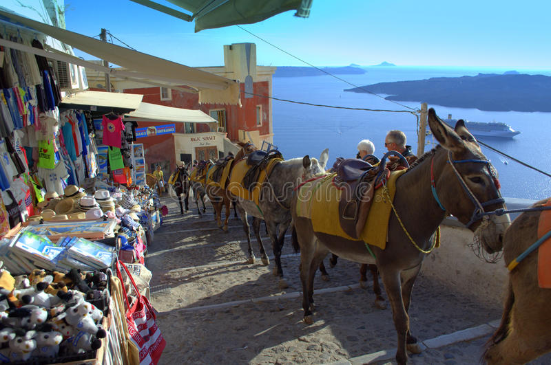 Donkeys on Santorini old street,Greece royalty free stock image