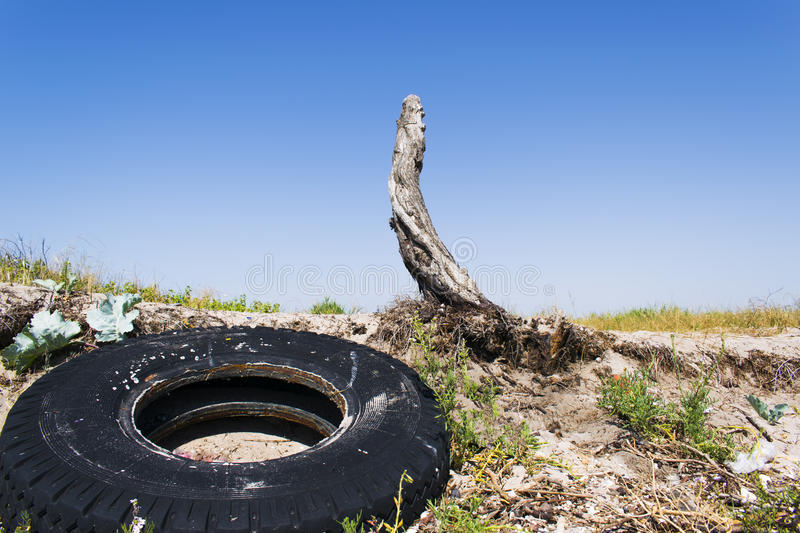Old stump with a wheel from the car royalty free stock photo