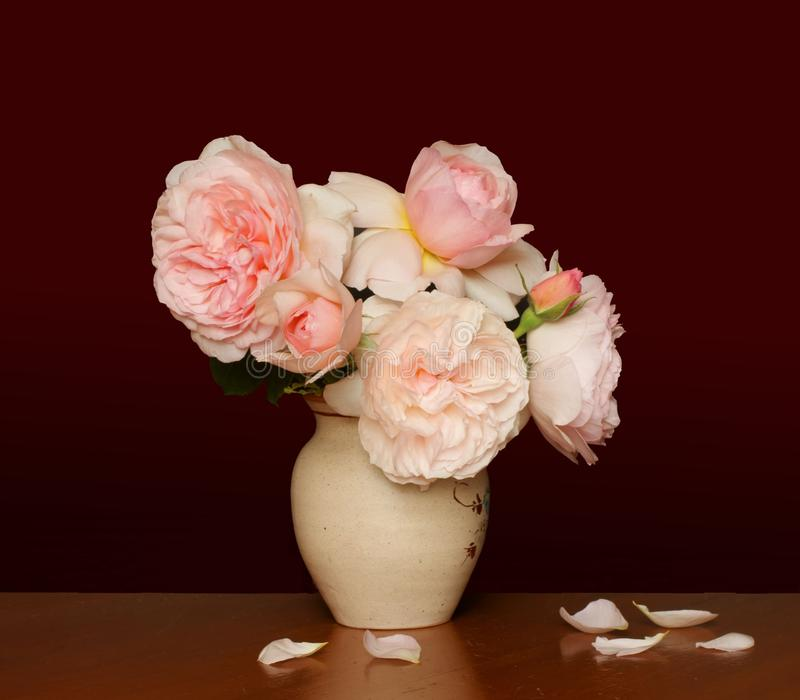 Old style roses royalty free stock images