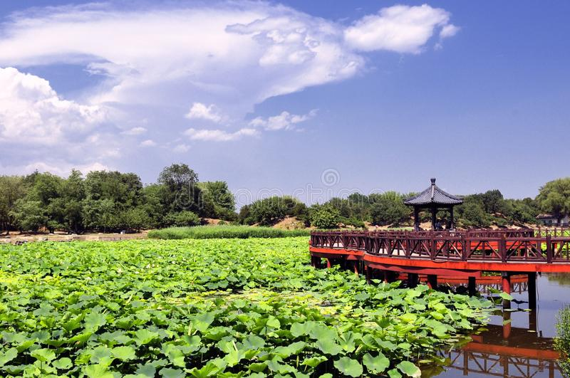 The old summer palace royalty free stock photo