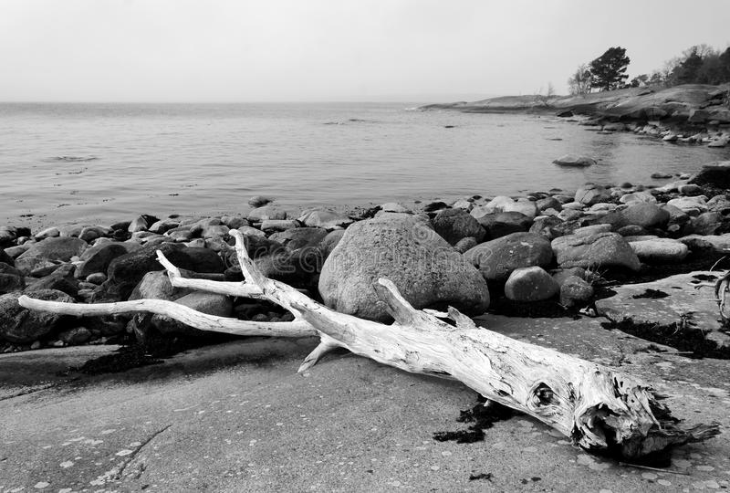 Old Swedish Sea Coast Stock Photography