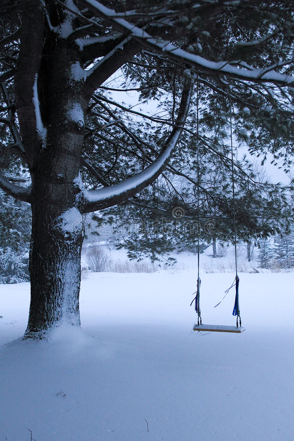 Free Old Swing On Fir Tree In Snow Royalty Free Stock Photography - 13239107