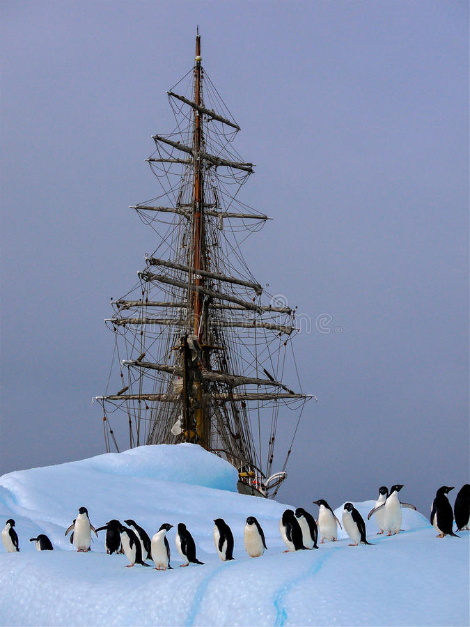 Old tallship or sailboat with adelie penguin stock photo
