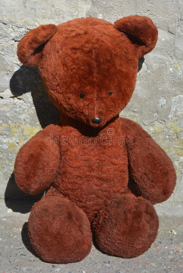 Old teddy bear stock images