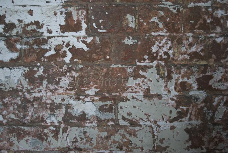Old Textured Brick Wall. royalty free stock images
