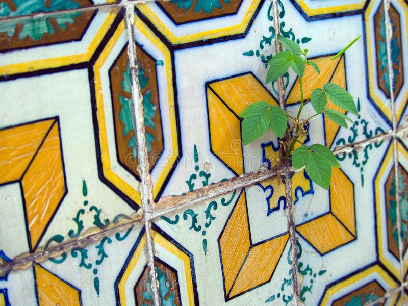 Download Old tiles stock photo. Image of background, paint, colourful - 39508494