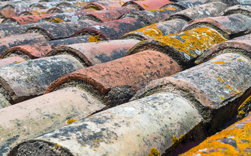 Old tiles of a roof with moss stock photography