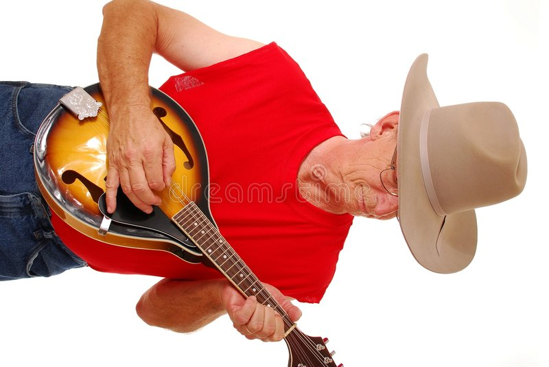 Old Time Country Musician 17 stock image