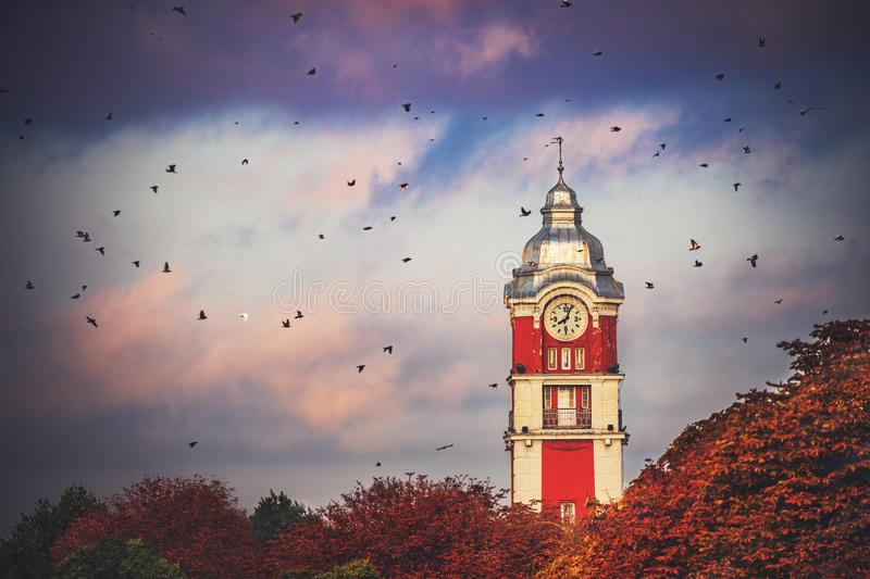 Old tower clock of railway station of Varna city, Bulgaria and flying birds at sunrise.image stock images