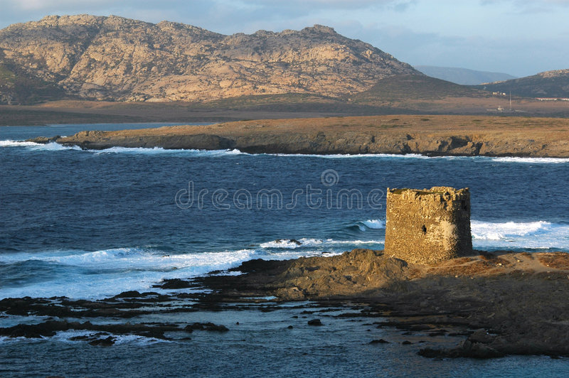 Old tower seaside. In sardinia, Italy royalty free stock photo