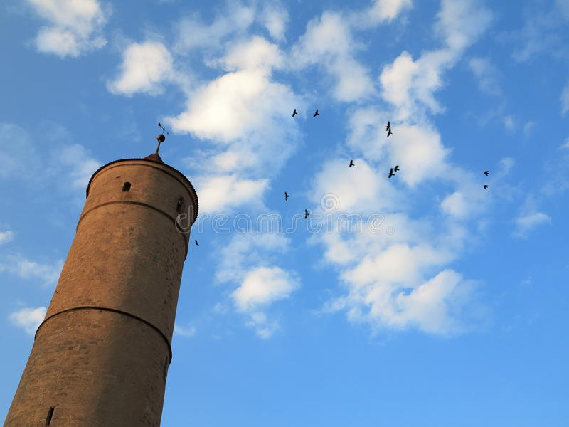 Tall old tower and birds in sky stock photo