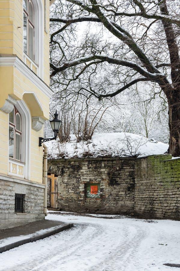 Old town of Tallinn royalty free stock photo