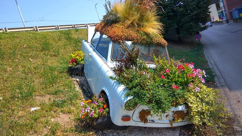 old-trabant-car-parked-planted-many-colo