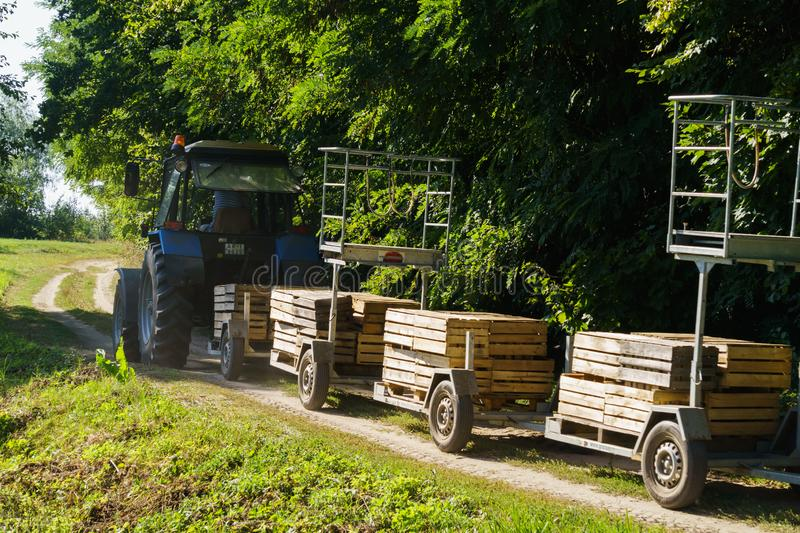 Old tractor with a device for harvesting apples. Boxes for harvesting.  stock photography