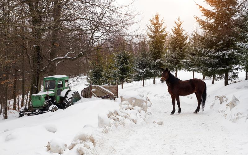 Old Tractor stuck in snow and horse standing on snowy road. Old Tractor stuck in snow and horse standing on the road royalty free stock images