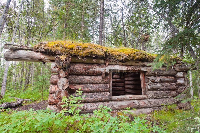Download Old Traditional Log Cabin Rotting In Yukon Taiga Stock Photo - Image: 20897016