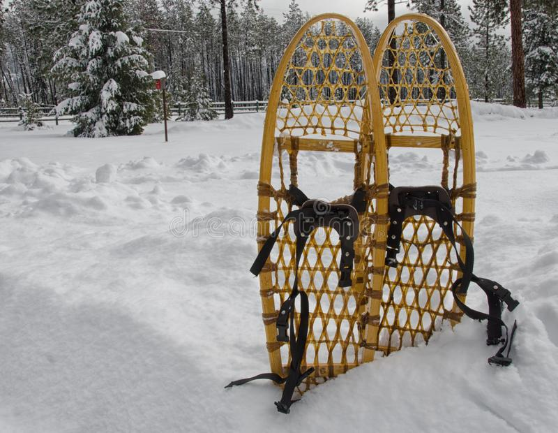 Old traditional snowshoes stock photo