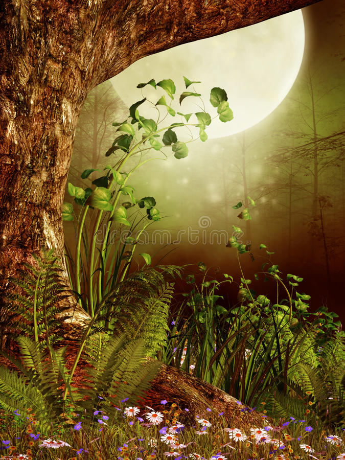 Old tree and fern. Forest scenery with an old tree and green fern royalty free illustration