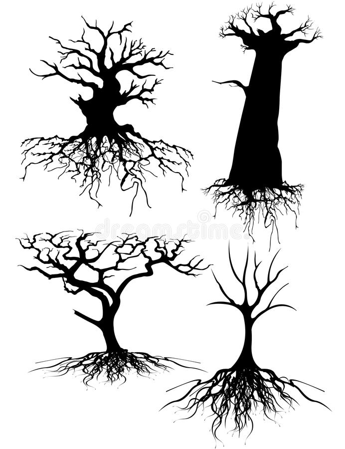 Old tree Silhouettes with roots. Four different Old tree Silhouettes with roots vector illustration