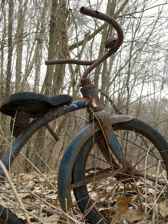 Free Old Tricycle In Forest Stock Photos - 1634883