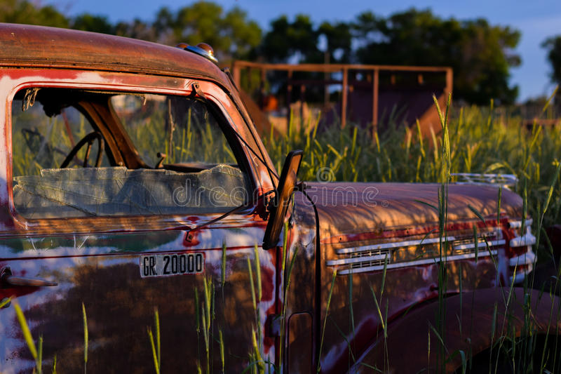 Old Truck In Field royalty free stock images