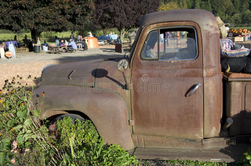 Old truck at pumpkin farm stock photography