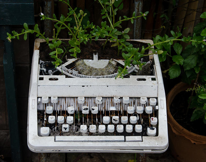Old typewriter with flower. Background royalty free stock photo