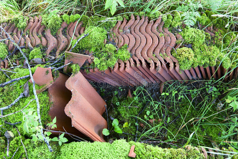 Old unused roof pans. In the gras royalty free stock image