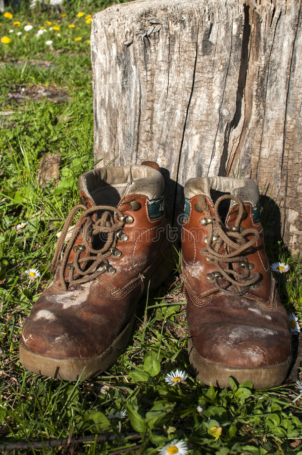 Old used grunge shoes. Old used weathered moldy grunge man`s leather shoes on green grass field by wooden trunk stock images