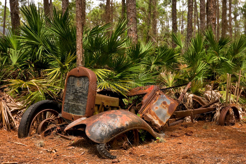 Abandoned old vehicle in a Florida forest. An old vehicle (whether it was a car or truck is not known) that was left behind after a crash. The front right fender stock photo