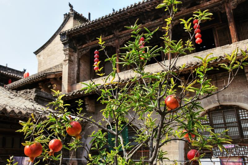 Lijiashan village in Shanxi province in China. The old village Lijiashan near Yellow river in northern China where houses are dug in the loess hills. Pomegranate stock images