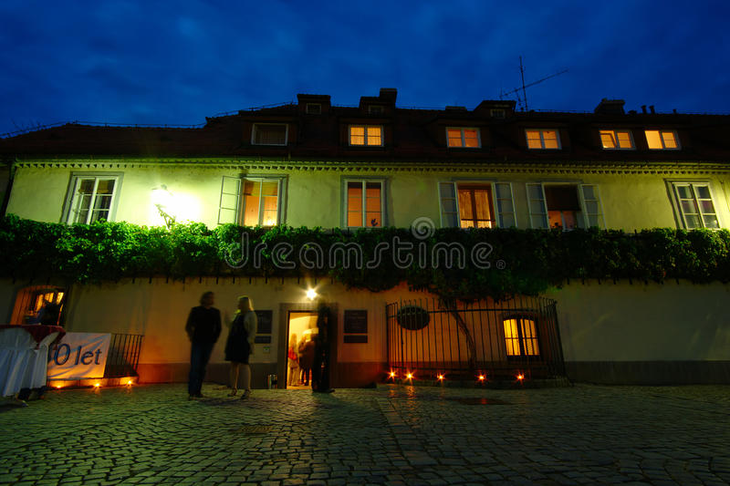 Old Vine House By Night royalty free stock photo
