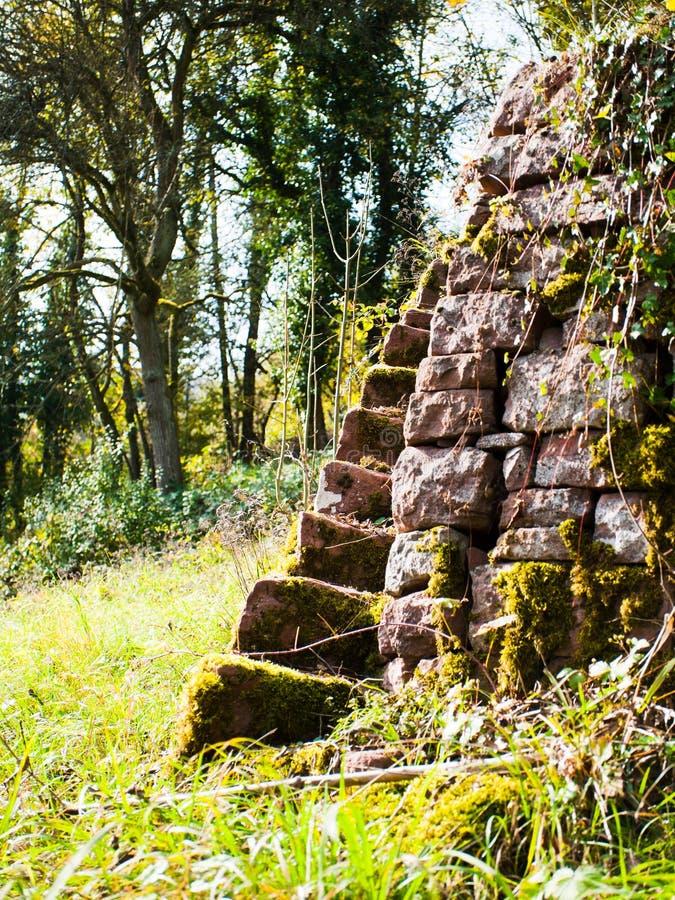 Old vineyard terraces stock image
