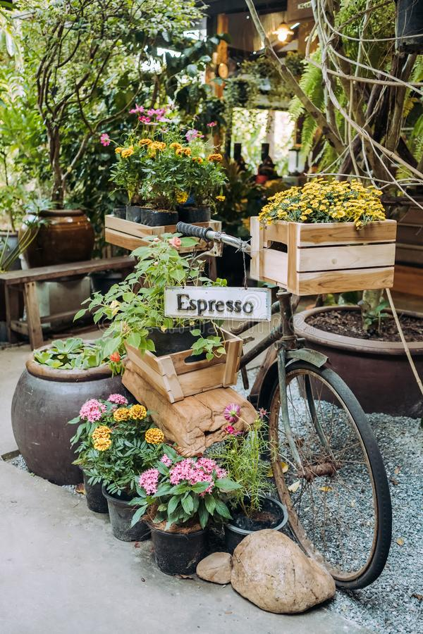 Old vintage bicycle with plants and flowers as a cafe decoration. In Thailand royalty free stock photos