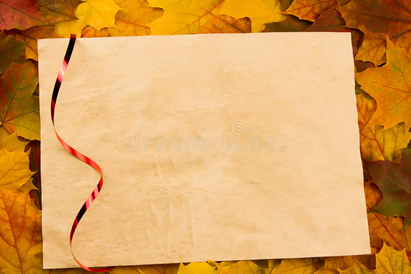 Old vintage blank sheet of paper on colorful maple leaves. Thanksgiving. Autumn royalty free stock photo