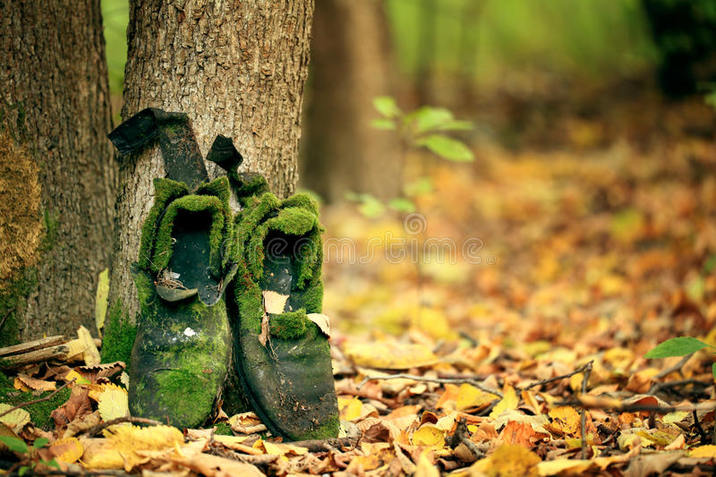 Old vintage boots in autmn leaves royalty free stock image