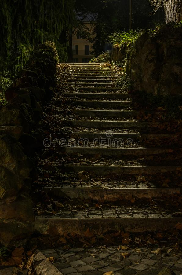 Free Old Vintage Retro Staircase From Paving Stones With Fallen Leaves In An Antique Park On An Autumn Night Royalty Free Stock Image - 127328776