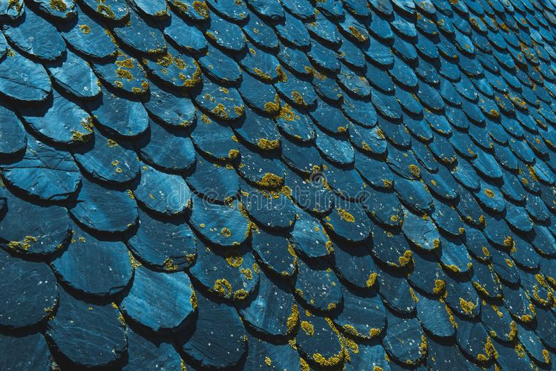 Old vintage roof made with slates and covered with moss surface toned in trendy blue color. Retro geometrical background. Color of. The year 2020 classic blue royalty free stock images