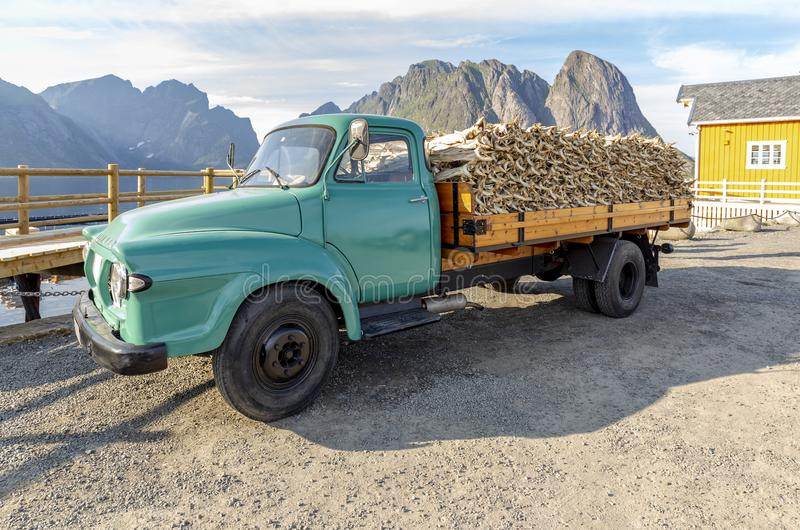Old vintage truck filled with Stockfish near yellow rorbu in Lofotens, Norway stock photography