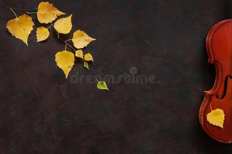 Old violin and birch branch with yellow autumn leaves. Top view, close-up on dark vintage background royalty free stock photos