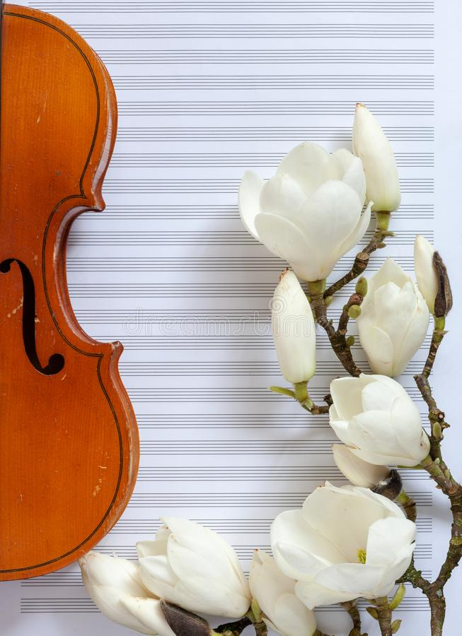 Old violin and blossoming magnolia brances on the white note paper. Top view, close-up.  royalty free stock images