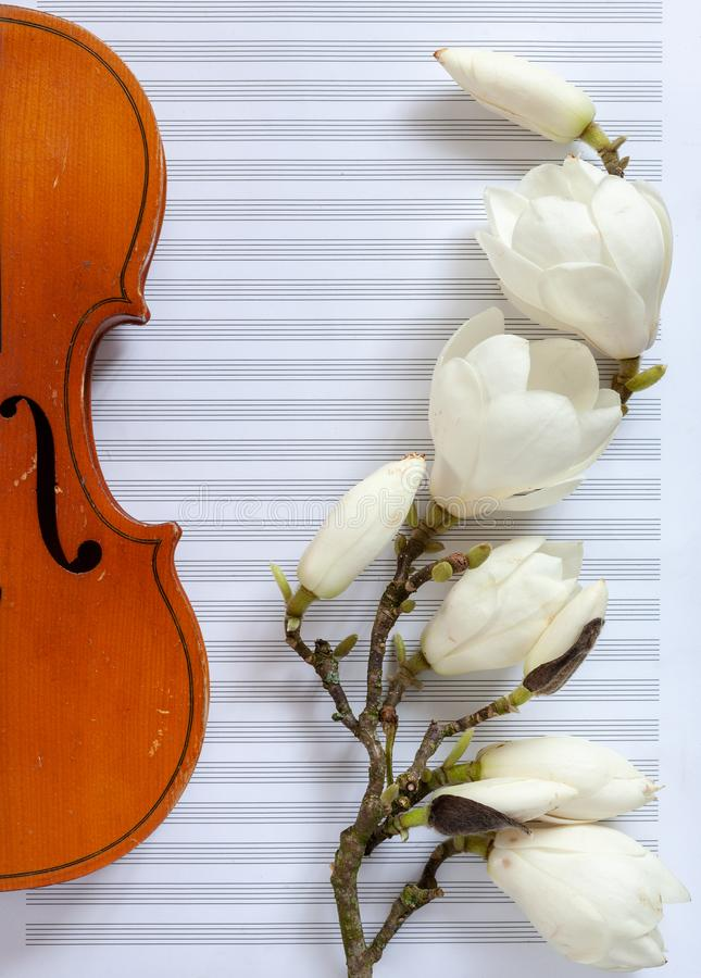 Old violin and blossoming magnolia brances on the white note paper. Top view, close-up.  royalty free stock photography