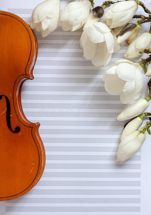 Old violin and blossoming magnolia brances on the white note paper. Top view, close-up.  royalty free stock image