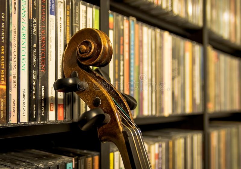 Still life with an old violin royalty free stock photo