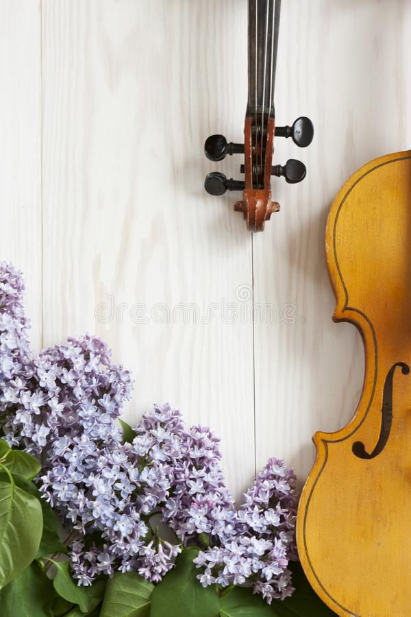 Old Violin and lilac flowers on white wooden background. Stringed musical instrument. Close up, top wiev, Love spring background royalty free stock photography